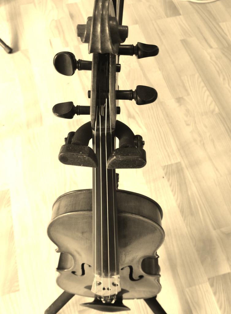 Violon Patrick